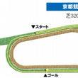 天皇賞を東京競馬場の…