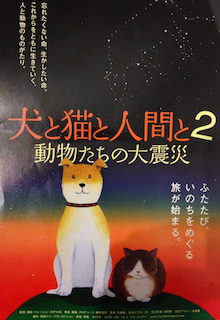 $菊地由美のKikuyumi blog