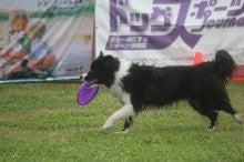 ~rally☆garden~