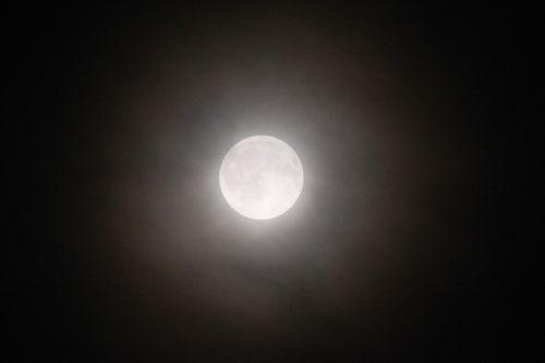 みさきのゑHAPPYになるブログ-月