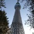 東京日記―一週目―