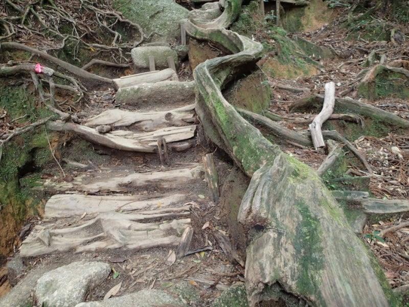 歩き人ふみの徒歩世界旅行 日本・台湾編-曲がった手すり
