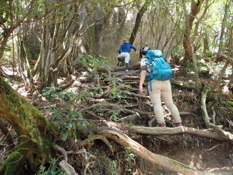 歩き人ふみの徒歩世界旅行 日本・台湾編-山歩き2