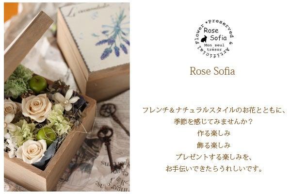$Rose Sofia