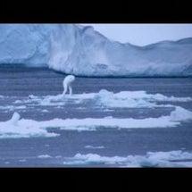 氷しかない国で謎の生…