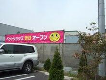 $ひろみちゃんと10pooのおきらくブログ-移転予定