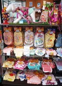 $ひろみちゃんと10pooのおきらくブログ-店舗ディスプレイ2