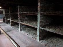 アウシュヴィッツ強制収容所 寝ていた場所