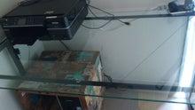 ライフオーガナイザー的 世界で一番帰りたくなる家   「自分ブランド」を作るお部屋作り-DSC_3137.JPG
