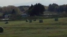今牧場のお母さんのブログ-DCF00272.jpg