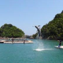 和歌山のクジラの町に…