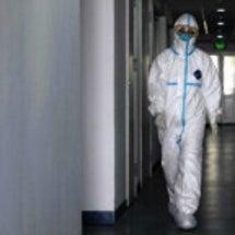 【中国 ウイルス化学…