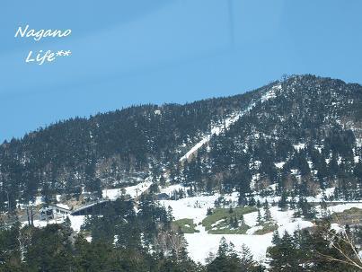 Nagano Life**-雪山