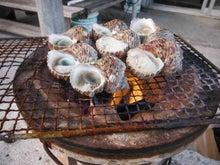 沖縄から遊漁船「アユナ丸」-サザエ