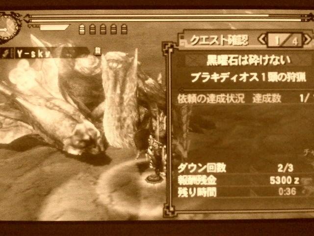 夫婦でモンハン狩猟記録-SH3I008600020001.jpg