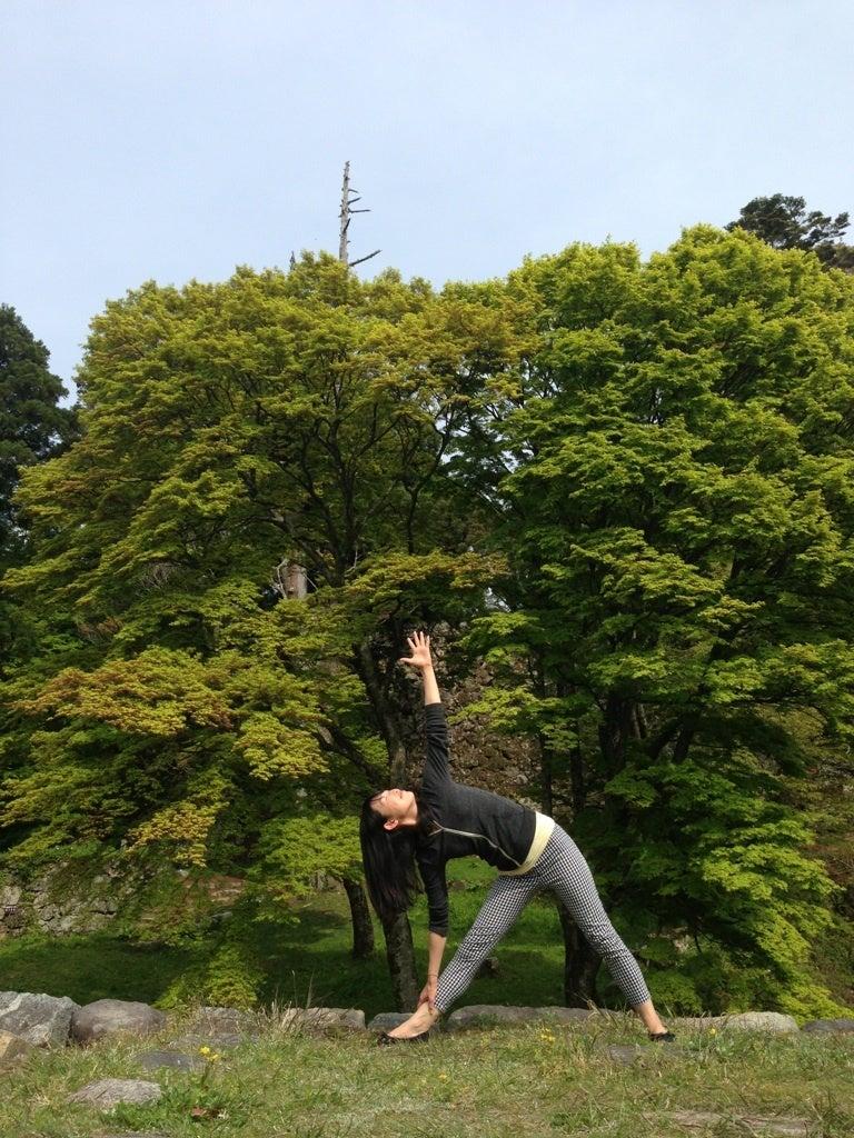 Aoi Yogaの画像