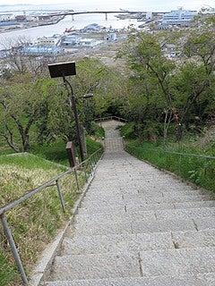 晴れのち曇り時々Ameブロ-鹿島神社参道