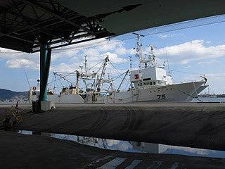 晴れのち曇り時々Ameブロ-石巻漁港