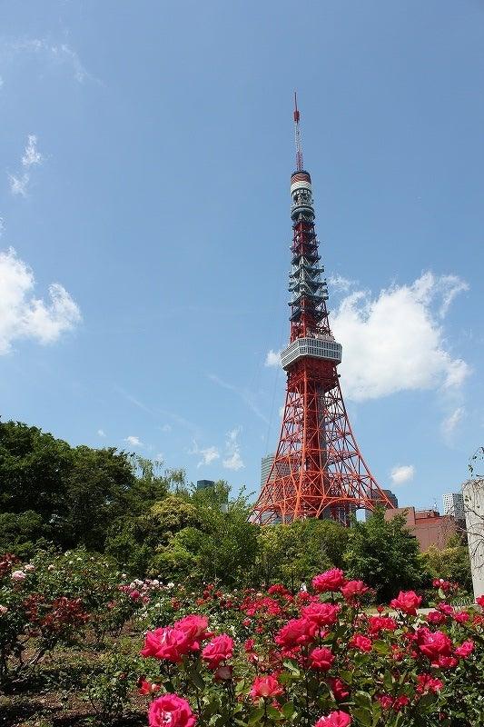 特選街情報 NX-Station Blog-プリンス芝公園と東京タワー