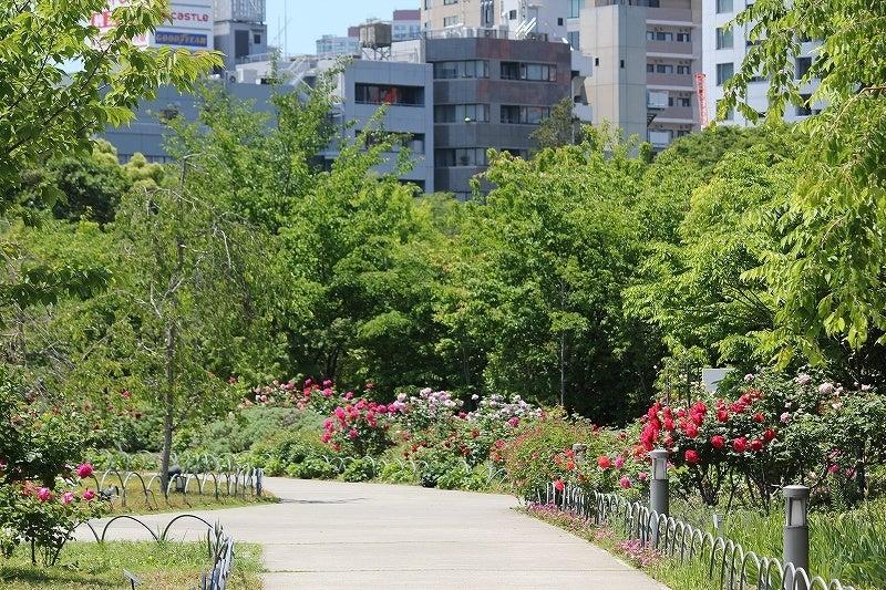 特選街情報 NX-Station Blog-プリンス芝公園