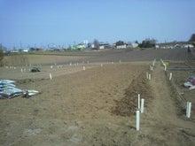 おっちゃんの畑2013、畑の上にも3年。-石取りきる