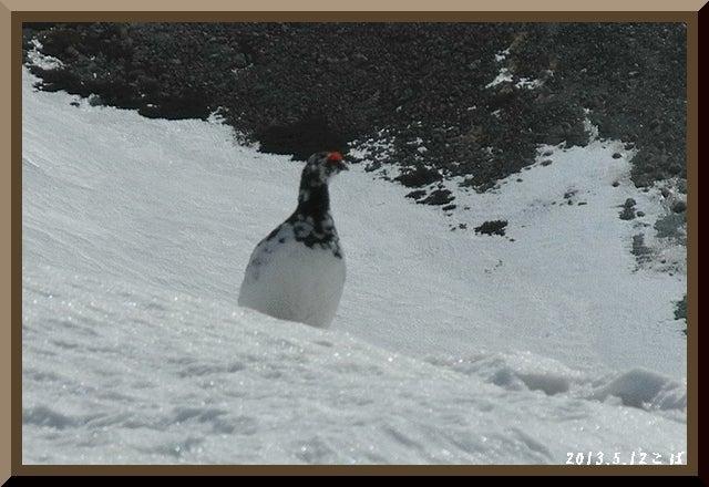 ロフトで綴る山と山スキー-0512_0926
