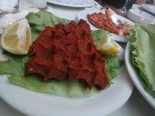 トルコ料理トプカプのエンドレスなサバイバル生活!