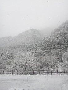 三井美代子のブタブタコブタ・ブー-130421_084504.jpg