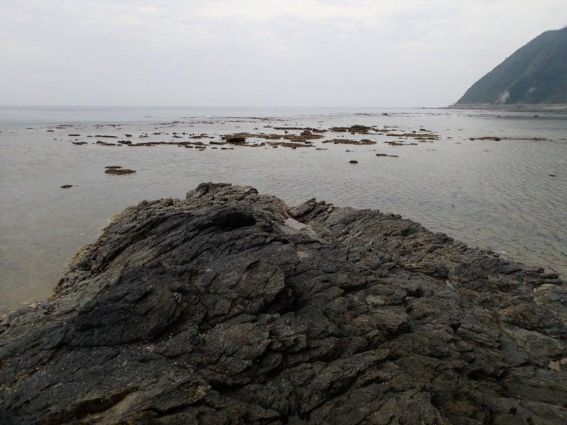 歩き人ふみの徒歩世界旅行 日本・台湾編-リーフ