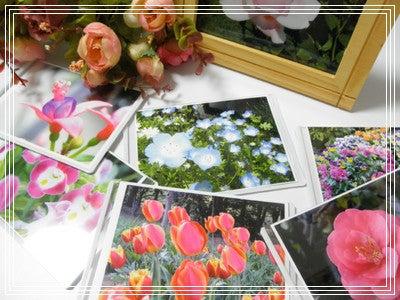 $彩と花と夢と風 フラワーフォトセラピーから始まるハッピーライフ♪宮城県仙台市