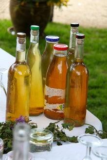 プロヴァンス発 南フランス暮らし365日-手作りワイン