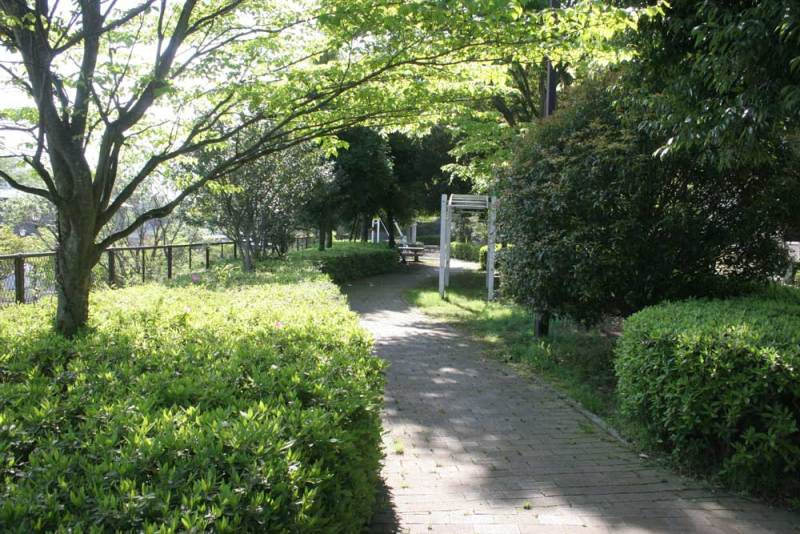 出羽山砦/北の入口付近