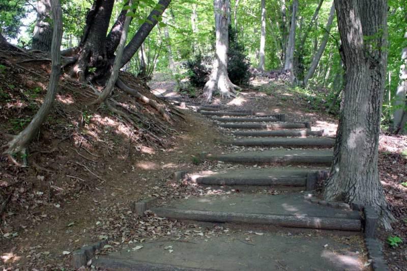 出羽山砦/南側の階段(下から)