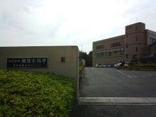かみちゃんのブログ-IMG_20130517_154123.jpg