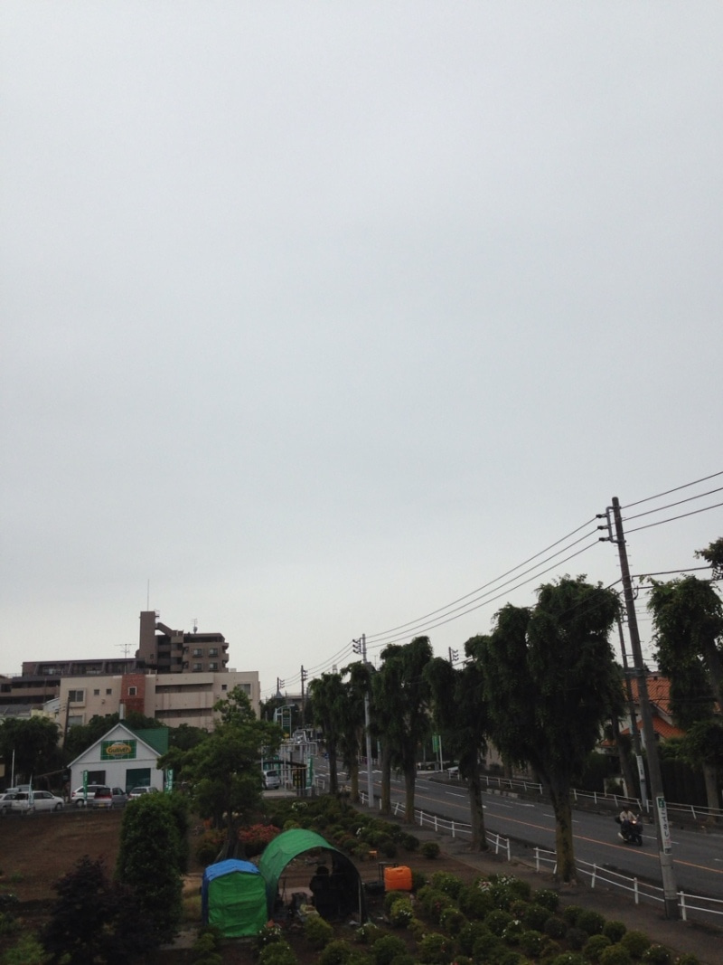 所沢 の 天気