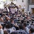 2013  三社祭