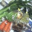 自然農法の野菜を引き…