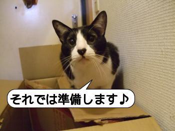 CHA☆CHIRO
