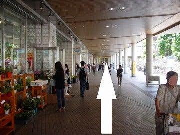 千葉県船橋市のCTC行政書士法人のブログ-3