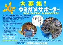 柑橘系男子の甘酸っぱい☆みかん農業日記