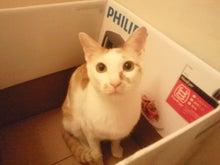 PFL★MIKIのブログ-2013052320580000.jpg