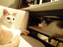 PFL★MIKIのブログ-2013052321550000.jpg