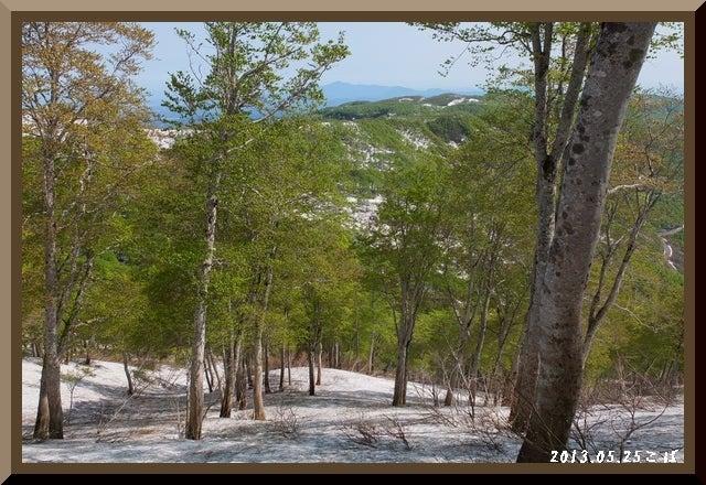 ロフトで綴る山と山スキー-0525_0902