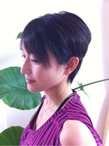 山梨甲府湯村温泉 旅館 湯志摩の郷 楽水園 梅のブログ