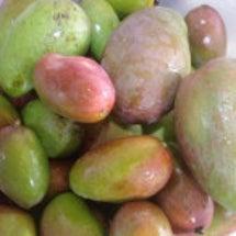 熱帯果樹・野菜の加工