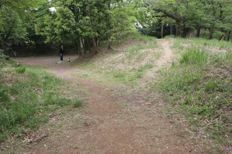 平山城/神社入口の虎口っぽい地形