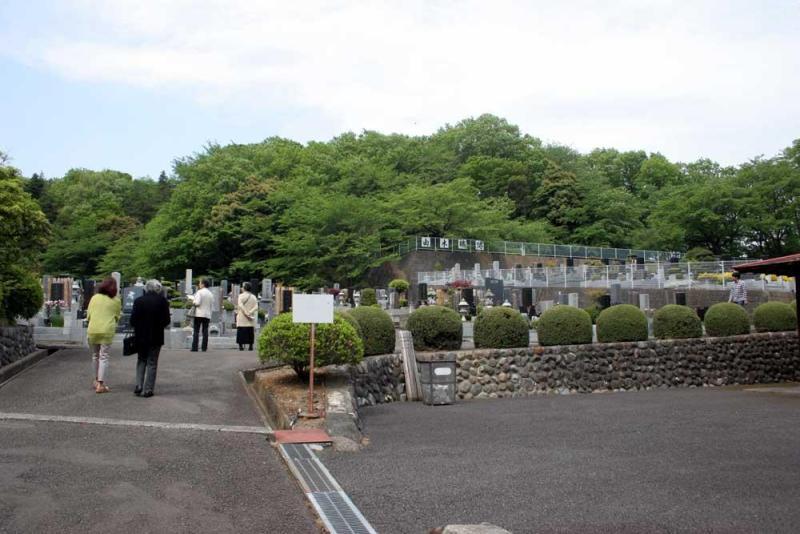 由木城/殿谷戸形式の地形