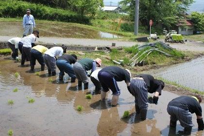 【群馬県昭和村】農園星ノ環ブログ*ほしのわ にっき*