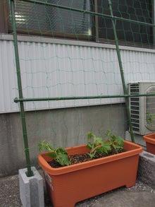 葉山のこだわり家具 葉山ガーデン 伍番館ブログ
