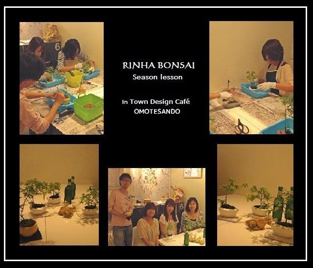 bonsai life      -盆栽のある暮らし- 東京の盆栽教室 琳葉(りんは)盆栽 RINHA BONSAI-琳葉盆栽 モダン 表参道 Café ワークショップ